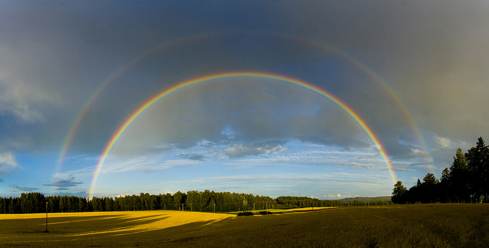 rainbow header image